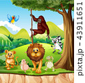 Wild animals in the jungle 43911651