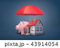 傘 雨傘 カサのイラスト 43914054