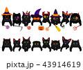 ベクター 黒猫 ハロウィンのイラスト 43914619