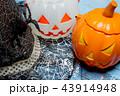 Pumpkin bucket and witch hat, Halloween decoration 43914948