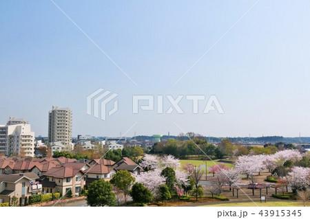 桜のある街並み風景 43915345