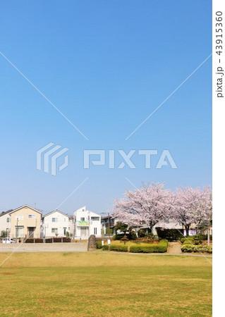 春の街並みと公園 43915360
