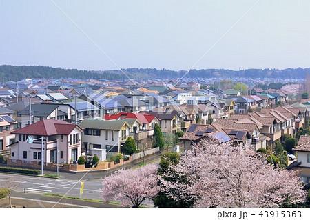 春の街並み 43915363