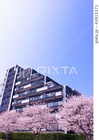 春のマンション 43915371