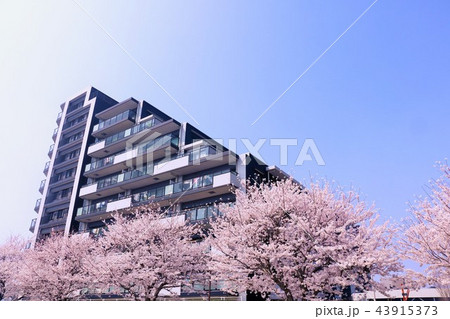 春のマンション 43915373