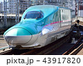 列車 新幹線 E5系の写真 43917820