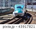 列車 新幹線 E5系の写真 43917821