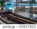 列車 新幹線 E5系の写真 43917823