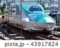 列車 新幹線 E5系の写真 43917824