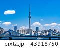 《東京都》スカイツリーと都市風景 43918750
