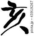 筆文字 亥年 年賀状のイラスト 43919267