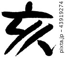 筆文字 亥年 年賀状のイラスト 43919274