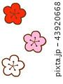 梅 花 梅の花のイラスト 43920668