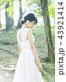 花嫁 ウェディング ウェディングドレスの写真 43921414