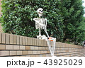 ハロウィン 秋 骸骨の写真 43925029