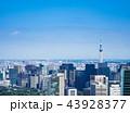 東京 東京スカイツリー スカイツリーの写真 43928377