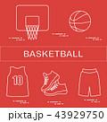スポーツ バスケ バスケットボールのイラスト 43929750