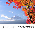 富士山 山 世界文化遺産の写真 43929933