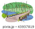 奥入瀬渓流 風景 ベクターのイラスト 43937819