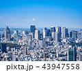 東京都市イメージ 新宿副都心周辺 43947558