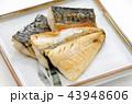 鯖の塩焼き 鯖 塩焼きの写真 43948606