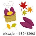 焼き芋と紅葉のイラストセット 43948998