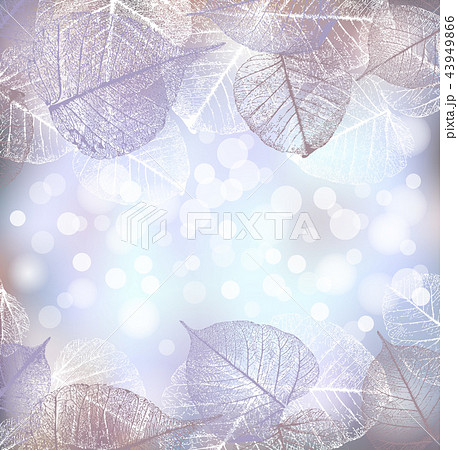 Festive winter background of bokeh lights with frame of hoarfrost leaves 43949866