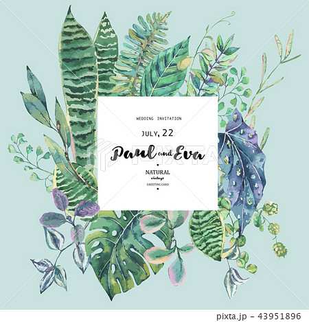 Vector green exotic leaves, greenery botanical illustration 43951896