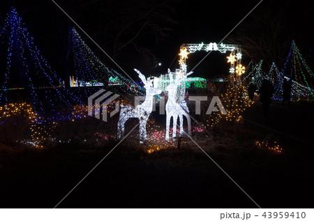 群馬県榛名湖のクリスマスイルミネーションフェスティバル、抽象的なきらきら装飾、ピンぼけの光と鹿 43959410