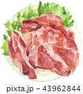 生肉 肉 水彩画のイラスト 43962844
