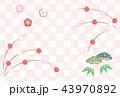 松竹梅 餅花 正月のイラスト 43970892