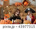 Enjoying Halloween treats 43977315