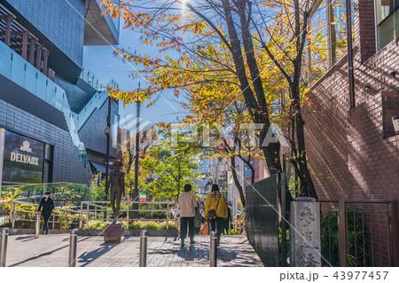 渋谷キャットストリート(旧渋谷...