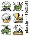 GOLF ゴルフ スポーツのイラスト 43983163