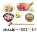 金目鯛 白バック 赤飯のイラスト 43984434
