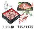 お祝い 赤飯・祝い鯛 43984435
