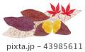 焼き芋 (もみじ) 43985611