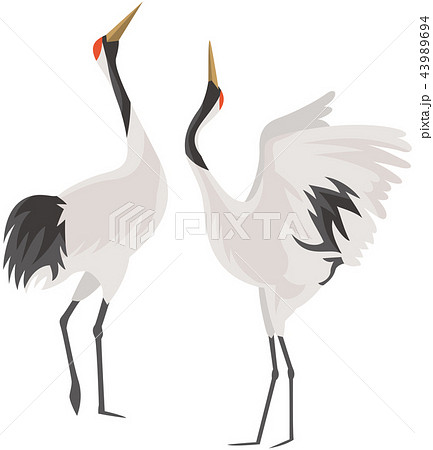 鶴のイメージイラストのイラスト素材 [43989694] - PIXTA