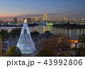 風景 夜景 ライトアップの写真 43992806