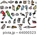 鳥 飼い鳥 外国の野鳥 フクロウ ペンギン 44000323