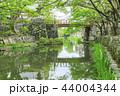八幡堀 堀 河川の写真 44004344