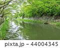 八幡堀 堀 河川の写真 44004345