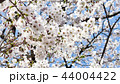 日本風景 44004422