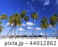 モルディブ リゾート 夏の写真 44012862