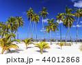 モルディブ リゾート 夏の写真 44012868