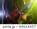 男 ギター 楽器の写真 44014457