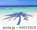 海 モルディブ 風景の写真 44015818