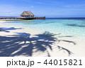 海 モルディブ 風景の写真 44015821