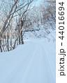 雪道 雪 冬の写真 44016694