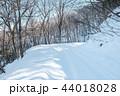 雪道 雪 冬の写真 44018028